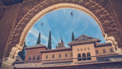 Photo of Guided visits to the Alhambra in Granada